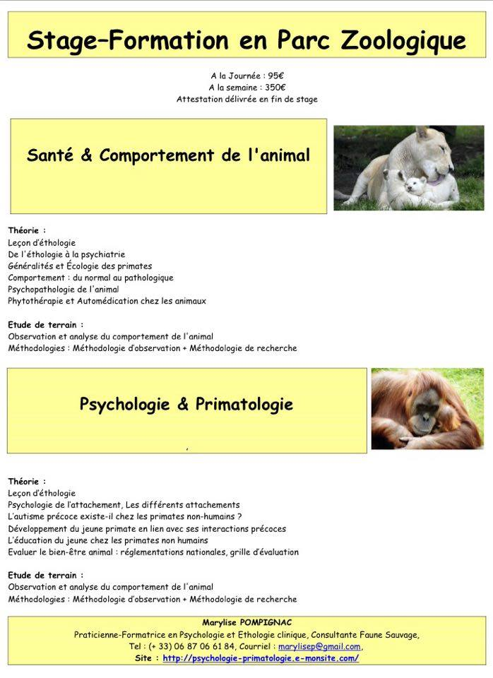 Psychologie primatologie communication interesp ce - Grille d observation du comportement ...
