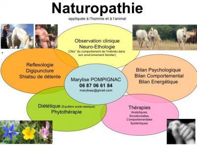 Neuropathologie details des competences